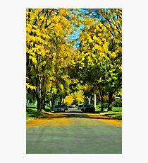 Neighborhood in Autumn Photographic Print