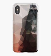 """I am the master"" iPhone Case/Skin"