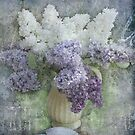 Lilacs by Jeff Burgess