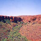 Kings Canyon, Northern Territory by Michael John