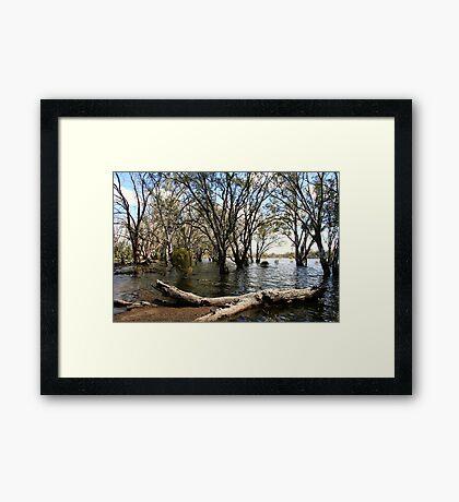 Flooded lake at Hattah Framed Print