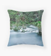 Cataract in Flood Throw Pillow
