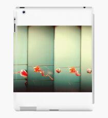 Sky Dragons iPad Case/Skin
