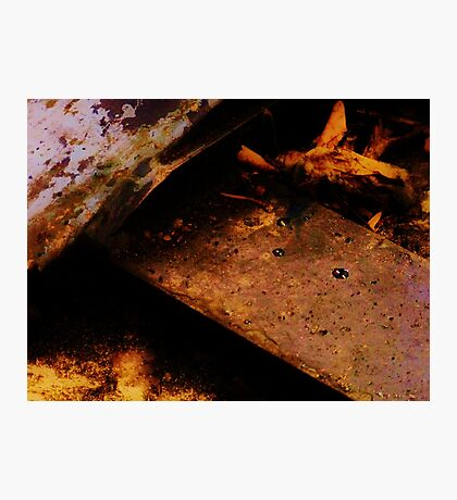 Oil & Leaves Photographic Print