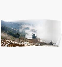 Rice Terraces in the Mist Poster
