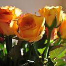 home & flowers... by Daidalos