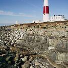 Portland Bill lighthouse  by StephenRB