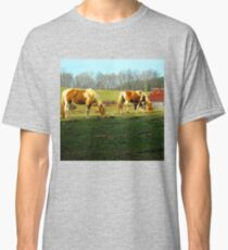 grazing horses Classic T-Shirt