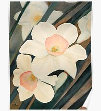 Narcissus Flowers in the Early Garden Poster
