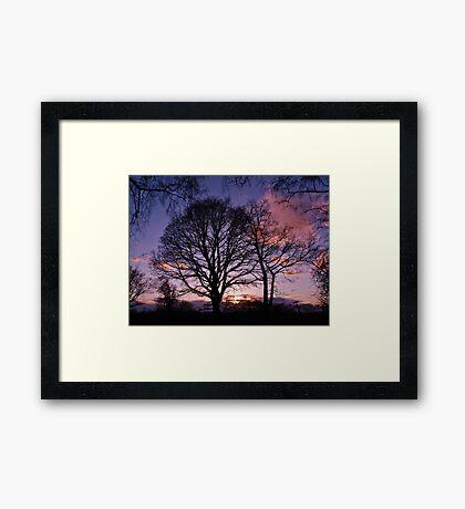 Woodland Edge Sunset Framed Print