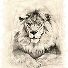 Eyes of the Lion King by Barb Miller