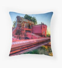 International Throw Pillow