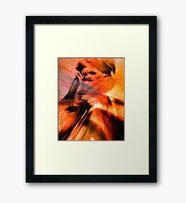Pertinacious Rue Framed Print