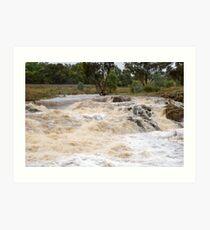 Cootamundra Creek  Cootamundra NSW Art Print