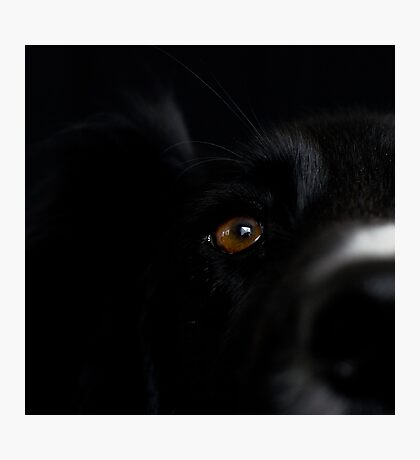 Square Black Photographic Print
