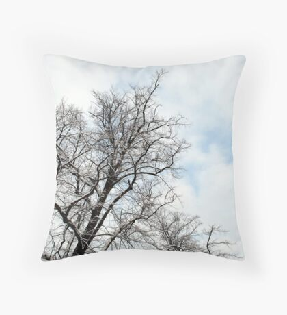 untitled #28 Throw Pillow