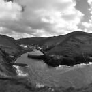 Fishing portal by imageworld