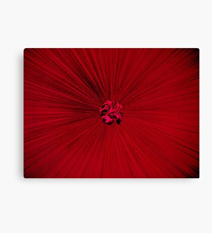 Red Bed. Canvas Print