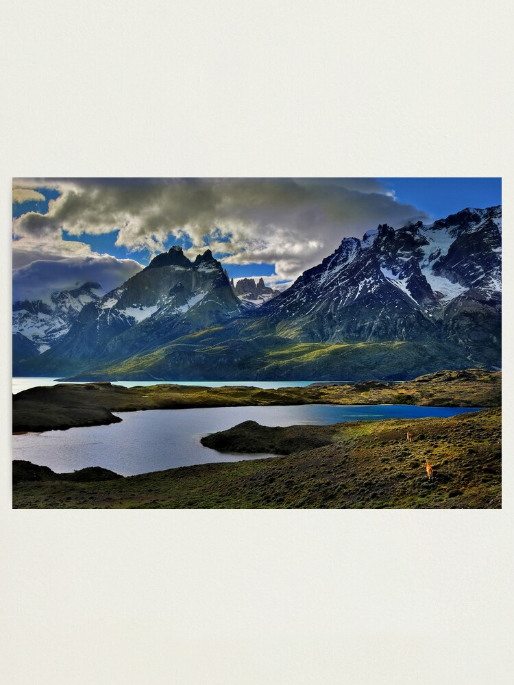 Alternate view of Guanacos and the Massif Photographic Print