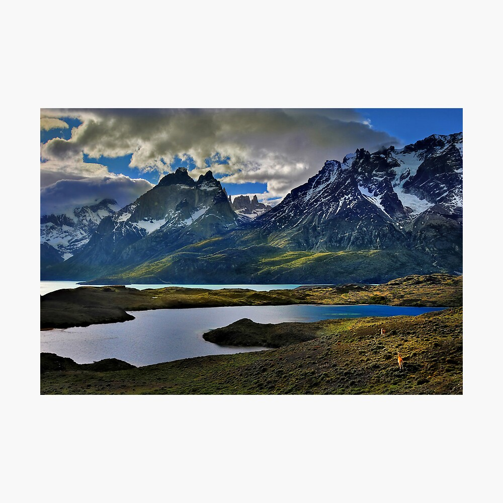 Guanacos and the Massif Photographic Print