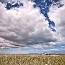 Big Sky at Goolwa by Barb Leopold