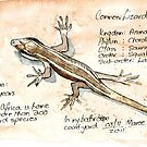 African Striped Skink - Not so easy! by Maree Clarkson