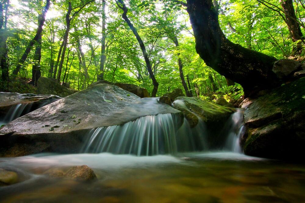 Korean waterfall in Seoraksan by AdamRussell