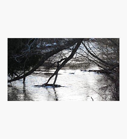 Winter Stream 2 Photographic Print