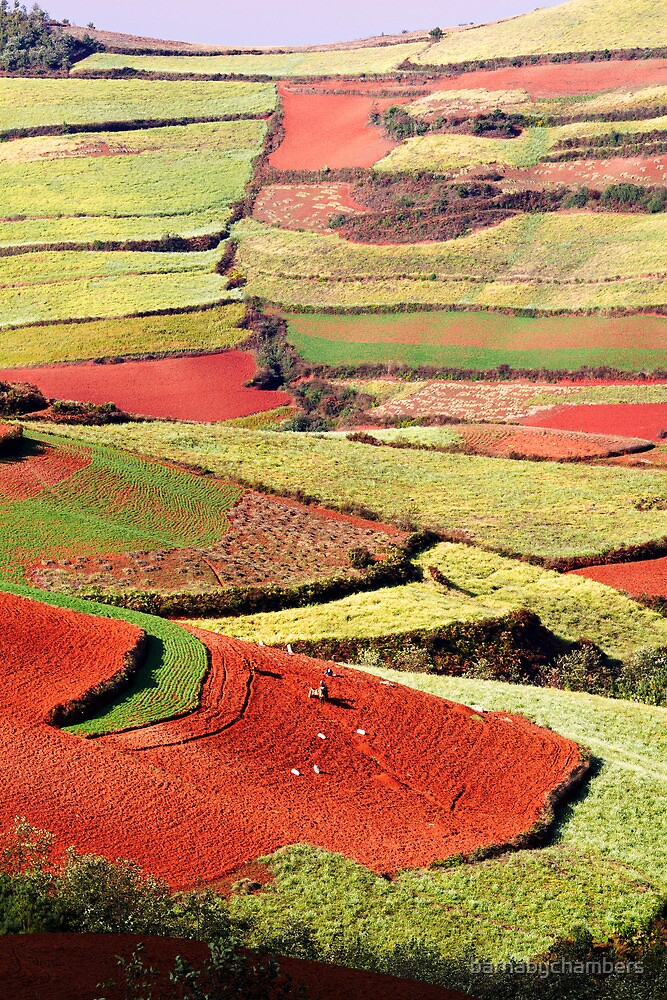 Dongchuan 4 by barnabychambers