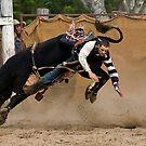 Cowboy Down by Sue  Thomson