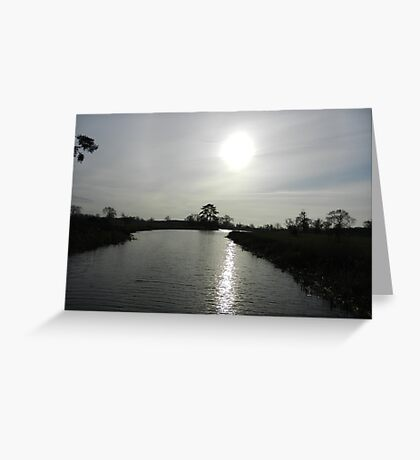 Following the light Greeting Card