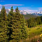 Summer In The Colorado Rockies by John  De Bord Photography