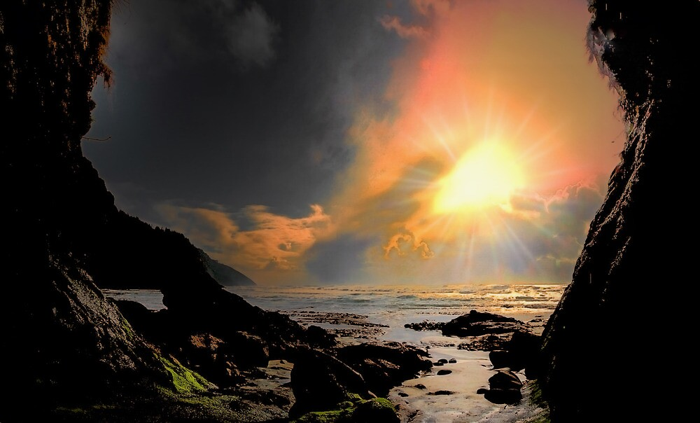 Some Dark, Some Light, and Some Glory by Charles & Patricia   Harkins ~ Picture Oregon