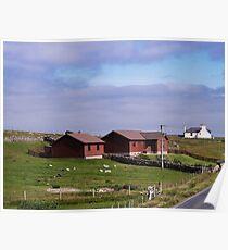 Blueberry Shetlands Poster