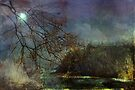 Moonlight on the Coast  by Elaine Manley