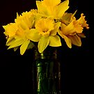 Daffy Still Life by Nick Boren