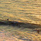 Surfer in the Sunset -  Surfistas en la Puesta del Sol by PtoVallartaMex