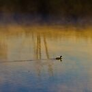 Fog rising from water at dawn by Rudi Venter