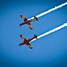 RAAF ROULETTES - Top Gun Mirror by James Millward