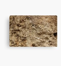 Human Remains Canvas Print