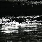 wave. waubs bay, bicheno, tasmania by tim buckley   bodhiimages