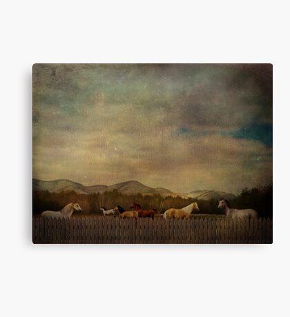 Alive Together Canvas Print