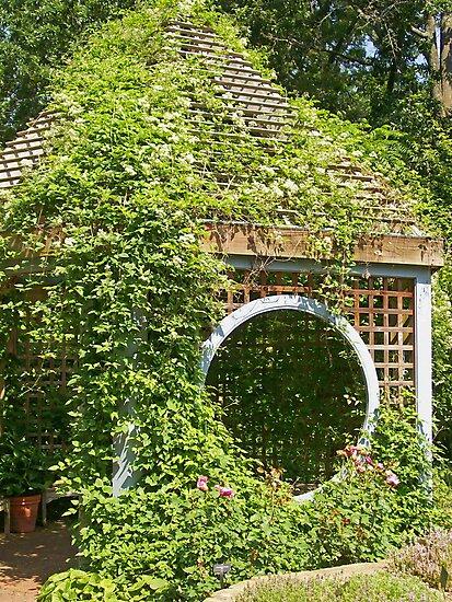 Garden Shed in Herb Garden by littlebirdart