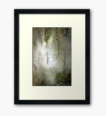 Weepin Willows Framed Print