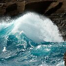 December Big Surf by ZWC Photography