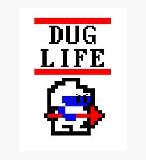 Dig Dug life Photographic Print
