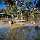 Murrumbidgee Floods - Front Row Seat by bazcelt
