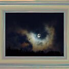 March Moon by JudyDarcy