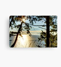 Shining on Golden Bay Canvas Print
