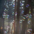 Bubbles by Katarina Kuhar